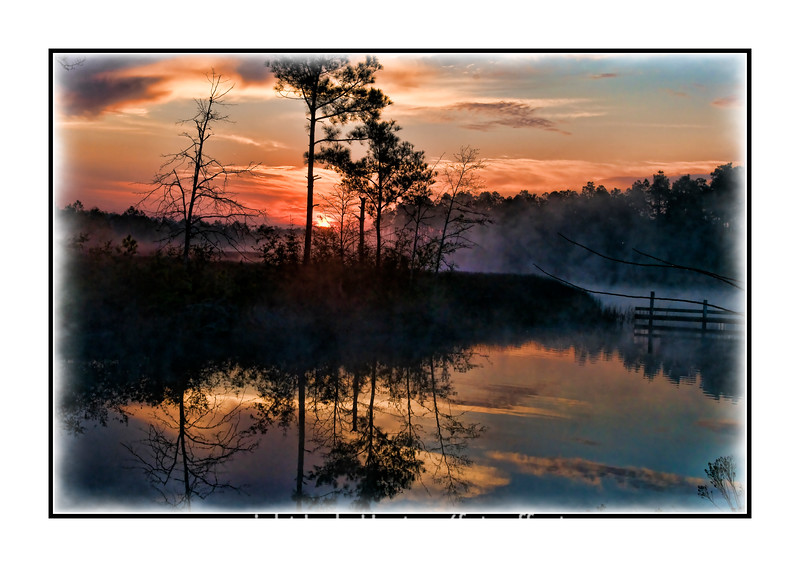 Sunrise over a swamp near Pensacola, Florida; view the details in the largest sizes.  This was one of the neatest spots I've ever photographed at sunrise.  Even small changes in time, as well as where I aimed the camera resulted in pretty different images.  I especially loved the mist rising off the swamp, since this effect is something I don't get to see very often.  I enjoyed everyone's pics today...especially Gail's owl.