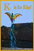Pterodactyl Kite