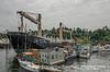 Small Houseboats on Lake Washington, Seattle