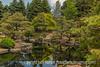 Japanese Garden, Denver Botanic Gardens - painterly effects applied