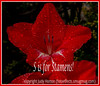 S is for Stamens!