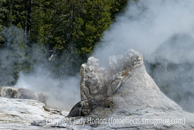 Yellowstone National Park - another old shot
