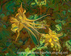 Yellow Columbine - yesterday was a very scary day here in Colorado Springs.  Phil had a PT appointment at 10:30 so we left the house about 10:00.  The blizzard was supposed to hit us in the afternoon, but it was already snowing hard and the wind was really blowing.  When we got to PT,  it was closed.  He also had an appointment with his podiatrist to treat a wound on his foot, so I called them and asked if we could come early.  That was about 10 miles from PT.  By the time we got there, the weather had gotten quite a bit worse and cars were starting to slide around.  I was beginning to worry about getting home.  The side windows were completely icing up in just a minute or two, so we had to keep lowering the windows every few minutes to keep the ice off.  We got out of the podiatrists a bit after 12:00.  We could not see more than a couple of feet in front of us.   I managed too get out of the parking lot by looking at where the landscaping was and staying fairly close to that because we could not tell where the pavement began or ended.  At this point, we were about 5 miles from home.  We thought about going to our daughters, which was a bit closer, but I opted to go for a major highway because there would be other cars that I might be able to follow.  I've never experienced anything so scary.  The defrosters were on high, but we still had to open one window to keep the windshield from fogging up.  We could not tell where the road was and could not see another car unless we were almost on top of it.  I did not think we could possibly get home safely.  We did make it to our house after an hour.  I was shaking so hard.  I immediately called my son-in-law to see if my daughter had gone into work and, of course, she had.  I told him to call her and tell her to stay put for the night, but she had already left.  She got onto I-25 in her little Fiat, which had snow tires, and after about four hours she had managed to get about halfway home.  Then they closed the highway.  When she got off the highway, most of the major roads she would take to get home were closed, so she had to keep trying other routes.  She got stuck at one point.  Her husband set off to try to get to her, so they decided to try to meet up, which they eventually did.  They got back to their neighborhood nearly eight hours after Heather had left work.  Her car got stuck there, so they pushed it to the side of the road and left it.  Meanwhile, their son, our grandson, had left Boulder that morning to come home to meet a friend for spring break.  Spencer was forced to leave I-25 about 30 miles from here and his car slid into a ditch and then he could not get it restarted.  It was getting dark then.  He had been on the road all day.  He was rescued by a cop who took him to a local church which had no heat.  Later last night, a bus came from Castle Rock, CO and loaded up all the people who had taken shelter in the church and took them to a rescue center in Castle Rock.  He spent the night there and is still there.  Thanks heavens, it all turned out ok, but it was a miserable day wondering if our family would be safe.  Take care all of you who are getting this storm now!