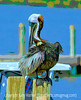Pelican, an old image, reprocessed in a more painterly version - I will be at doctor's appointments most of the day so will comment later.