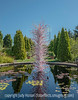 Dale Chihuly Glass Sculpture at the Denver Botanic Gardens