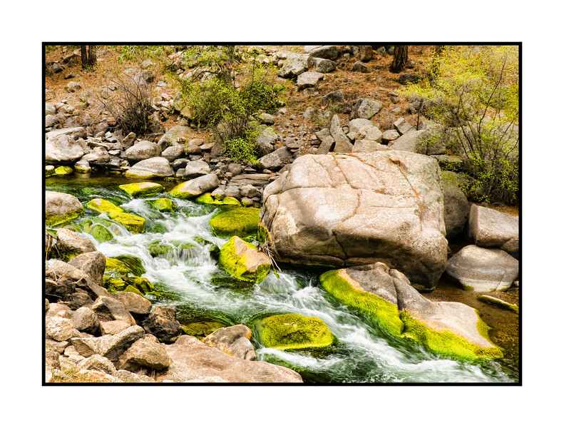 Eleven Mile Canyon, Colorado