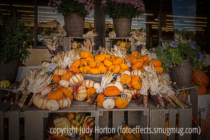 Autumn Display of Gourds and Corn with Painterly Effects