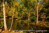 Gallery Garden in Santa Fe - a reprocessed older image