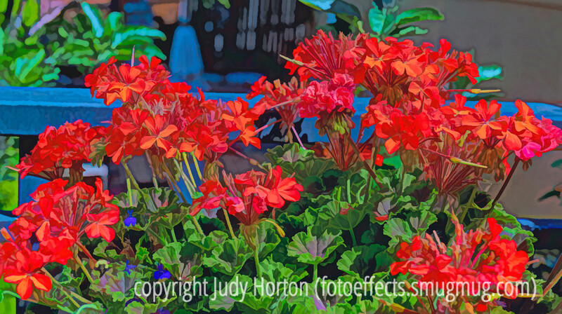 Geraniums on the Deck - a sort of watercolor version