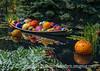 Chihuly Glass at the Denver Botanic Garden
