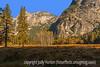 Yosemite National Park in Autumn