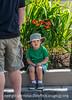 Little Boy in Front of Crocosmia Lucifer