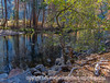 Yosemite in Autumn - River Reflections