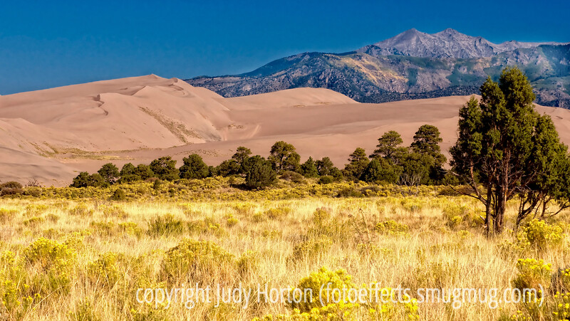 One view from the campground at the Great Sand Dunes National Park, looking toward the Sangre de Cristo mountains.<br /> <br /> Thanks for the supportive comments on my previous post of the yellow tulip.