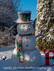 Snowman with Snow - I thought the artificial snowman with actual snow on him looked really cute.
