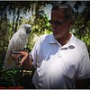 Bob and Cockatoo-April 12, 2012-P1180576