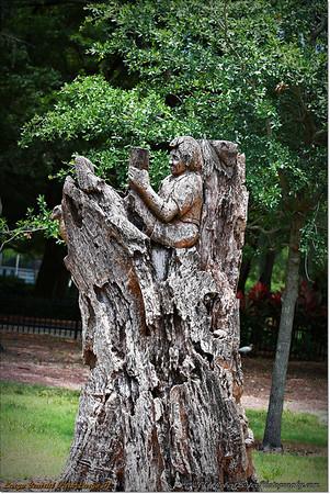 2014-06-16_IMG_1975_Largo Central Park,Largo,Fl _