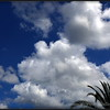 Clouds....Clearwater,Fl.....© 2014   RobertLesterPhotography.com