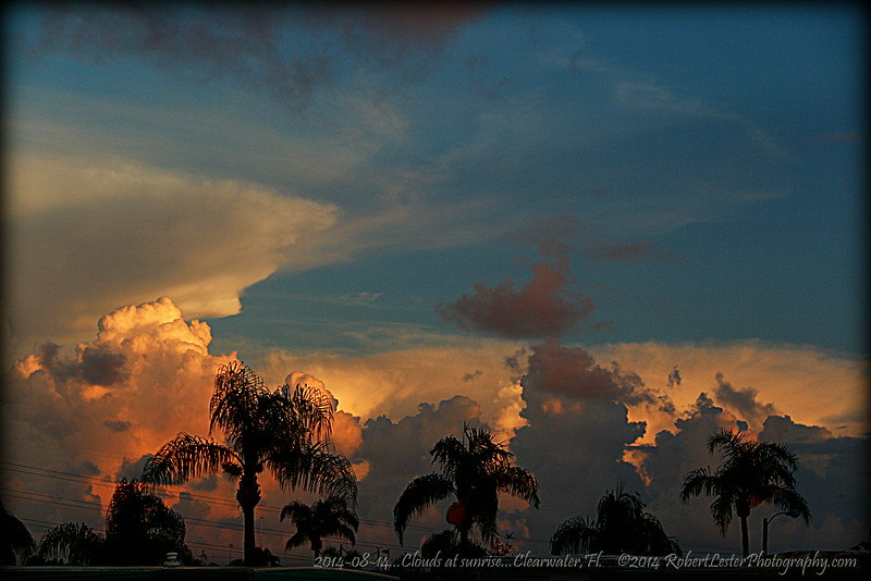 2014-08-14...Clouds at sunrise...Clearwater,Fl.    ©2014 RobertLesterPhotography.com