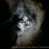 Super Moon...2014-08-10...4:41am...Clearwater,Fl   ©2014 RobertLesterPhotography.com