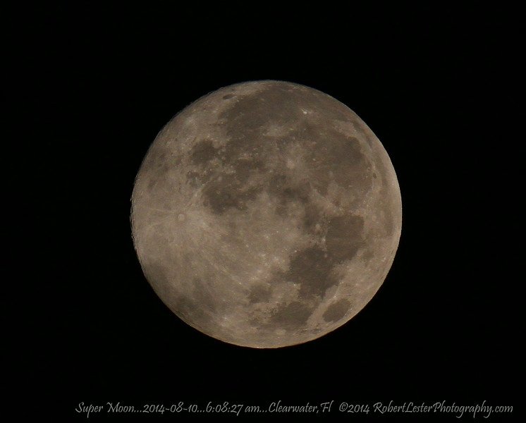 Super Moon...2014-08-10...6:08:27 am...Clearwater,Fl   ©2014 RobertLesterPhotography.com
