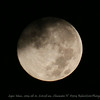 Super Moon...2014-08-10...6:10:28 am...Clearwater,Fl   ©2014 RobertLesterPhotography.com