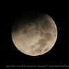 Super Moon...2014-08-10...6:09:56 am...Clearwater,Fl   ©2014 RobertLesterPhotography.com