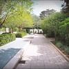 2016-11-02_PB020030_Botanical Gardens,Largo,Fl