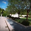 2016-11-02_PB020026_Botanical Gardens,Largo,Fl