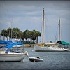 2017-04-24_P4240053_North Yacht Basin,St pete,Fl