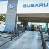 Fitzgerald Subaru Clearwater + Humane Society of Pinellas...Dog days adoption