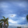 _2260003_pl5 25mm1 8 Sunrise clouds