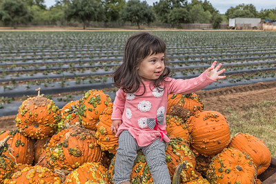 Granddaughter Leia at Pumpkin Farm
