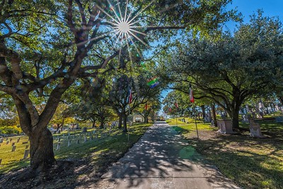 State Highway in Texas State Cemetery