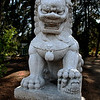 5/16/08<br /> One of a pair of lions guarding the Garden of Flowing Fragrance at the Huntington in San Marino. This place is amazing, which is why we took our parents there after Ann's graduation. Yay Ann! I cut out the lion from the background which I then blurred, darkened and lowered the contrast on. I think it stands out well without looking too fake.