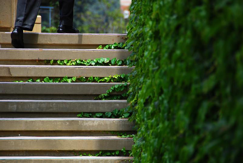 Ackerman Stairs