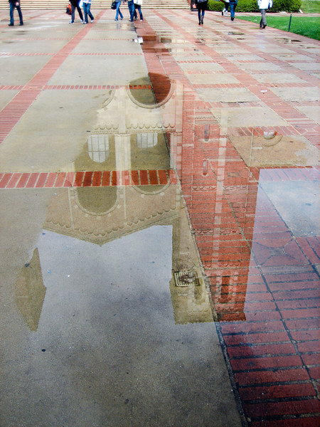 Royce Hall Reflection
