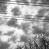 Sky, Tree, Wires