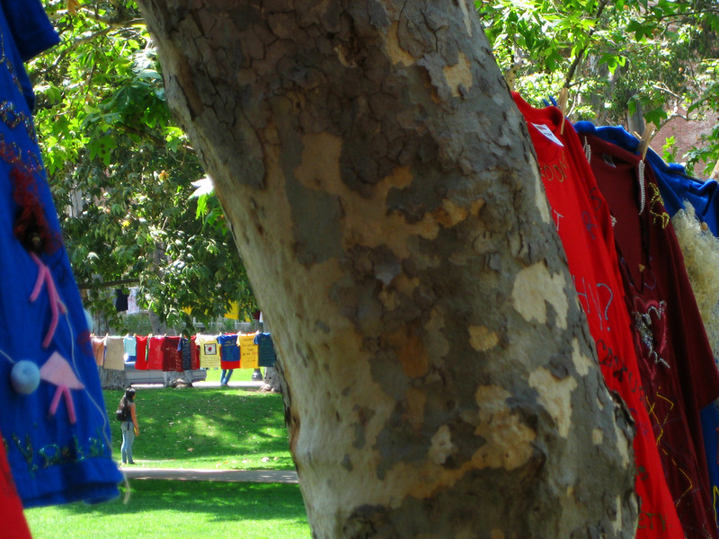 UCLA Clothesline Project