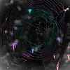 Spiderweb Colorized