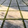 Square Separation