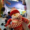 Fisheye Snowman