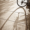 "<span id=""date"">_12/04/10_</span> <span id=""title"">Tire Shadow</span> Quick shot of a neat shadow outside the grocery store. I'm glad I stopped to take it - the bike and the sun were gone when we left the store.  <a href=""http://www.jawsnap.net/Daily/year2/7157835_BfJPF#731917538_Sw7QF"">[last year]</a>"
