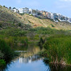 "<span id=""date"">_06/11/10_</span> <span id=""title"">Ballona Wetlands</span> This is Los Angeles? 'tis. I've been wanting to come here for a while, and I took the day off today and spent an hour or so scoping it out this morning. I need a much longer lens to capture some good bird shots, but I plan on renting one and coming back. I searched SmugMug for some shots of this place before I went and was inspired by <a href=""http://machinegun.smugmug.com/Nature/Ballona-Wetlands/7194590_rAgE2"">Benjamin (machinegun)</a>.  If you want to know more before visiting, check out the <a href=""http://www.ballonafriends.org/"">Friends of Ballona Wetlands</a> website, it has a ton of great info.  <a href=""http://www.jawsnap.net/Daily/year2/7157835_BfJPF#561445504_FY92m"">[last year]</a>"