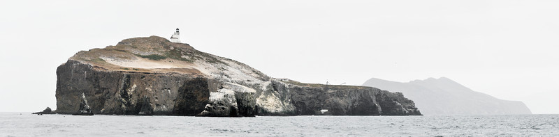"""<span id=""""date"""">_07/03/10_</span> <span id=""""title"""">Anacapa Island</span> 5-shot panorama of Anacapa island, which is actually a tight chain of 3 islands. In the foreground is East, where we were going to camp until the stairs broke and the NPS closed it. The stairs are directly below the crane that you can see the top of on the right side of the island. In the distance is West Anacapa, and you can't see Middle because East is blocking the view.  I took the shot as the boat headed back to the mainland after our wildlife cruise which took us along the North shore of Anacapa. On the way there we garnered up quite a following of seagulls because folks threw food to them - that was pretty entertaining until they started pooping on us. We also saw 2 pods of common dolphins, and a pride of sea lions. The islands are a huge breeding spot for seagulls, cormorants and pelicans, who have basically whitewashed half the island.  <a href=""""http://www.jawsnap.net/Travel/Ventura/12863408_qQw6m"""">more pics from this trip</a>  <a href=""""http://www.jawsnap.net/Daily/year2/7157835_BfJPF#581315862_MT9bj"""">[last year]</a>"""
