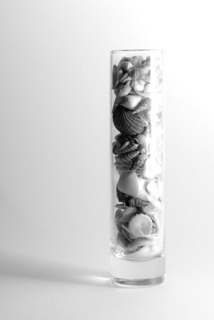 __01/15/11__ Glass of Shells This lovely glass full of little shells can be found in our bathroom, like so many bathrooms.  Setup: I set the glass on a piece of large white paperboard to get a background with no seams. On the right, I set the back of the foam board I used in yesterday's shot and pointed my off-camera flash at it, so it would bounce off. On the left, I set up a black cloth to avoid reflections. I intentionally overexposed, and then tweaked a little in Lightroom.  [last year]