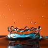 "<span id=""date"">__01/14/11__</span> <span id=""title"">Sunset Splash</span> <em>Water Drops, Day 3</em> Day 3 of water droplet photography, featuring a 'splash crown' - I'm not sure if that's a real term or not. Today I played with colored backgrounds and taking the photo at the same level as the water. I'm compiling everything I'm learning into a blog post, but I do have a <a href=""http://www.jawsnap.net/Utility/Setups/8246339_SpVpq#1157079109_RNKa5"">setup photo</a> for you today. I still have a few more things to try before I'm ready to share all my secrets. I really liked this shot because of the nice high 'crown' and the pleasing arrangement of the mini-drops flying off. Out of hundreds of photos, I got about 20 shots of this phenomenon. There are some extra colors (pink, green) because of the other backgrounds I was using. I wish the focus was on the front waves instead of the back, but oh well. Next time.  Read my <a href=""http://blog.jawsnap.net/2011/02/water-droplet-photography-lessons-learned/"">blog post on water droplet photography</a>!  <a href=""http://www.jawsnap.net/Daily/year2/7157835_BfJPF#764977298_LQ5Ez"">[last year]</a>"