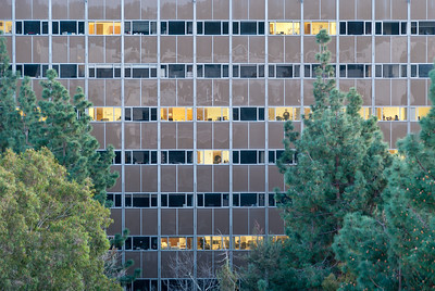__02/13/12__ Back o' Bunche This is the back of Bunche Hall at UCLA. It's neat to see a building from this vantage point in general, but it helped that I like the shape the trees created. The reflections in the tan part of the building are interesting, too.  [last year]