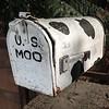 U.S. Moo