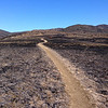 Burned Trail